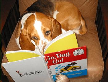 Nuestras últimas recomendaciones lectoras para estas vacaciones (y 3)