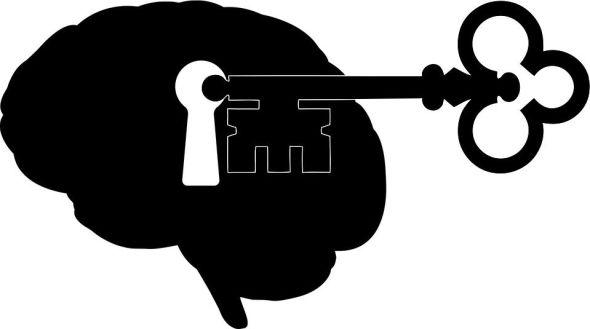 La Inteligencia Fracasada, Teoría y Práctica de la Estupidez