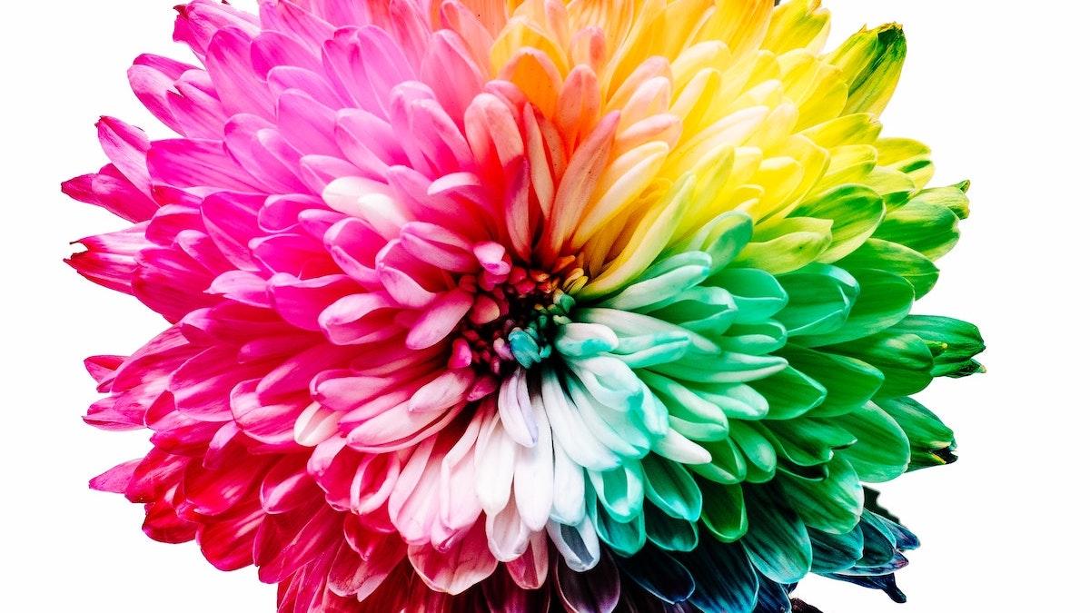 Ben jij gelukkig? 15 tips om je snel weer happy te voelen