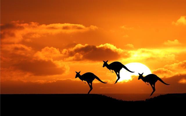 Kalau pengajuan visa turis australia sudah disetujui, tinggal menikmati liburan di Australia deh.