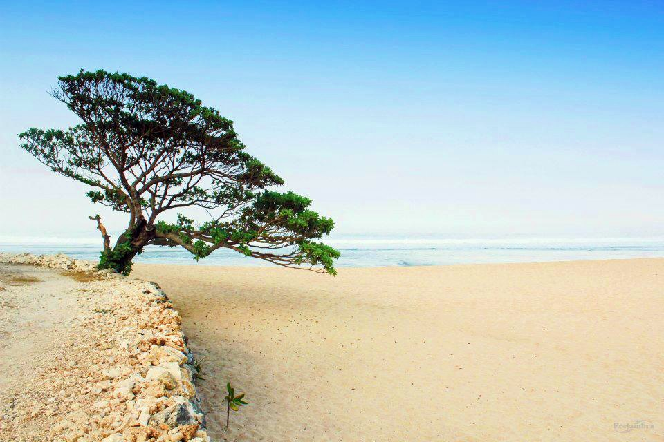Semuanya Ingin Tinggal Di Pantai Pok Tunggal