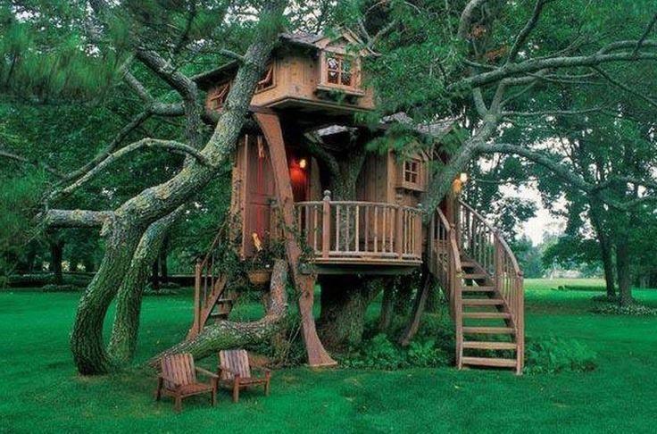Liburan Di Rumah Pohon Itu Juga Menyenangkan!