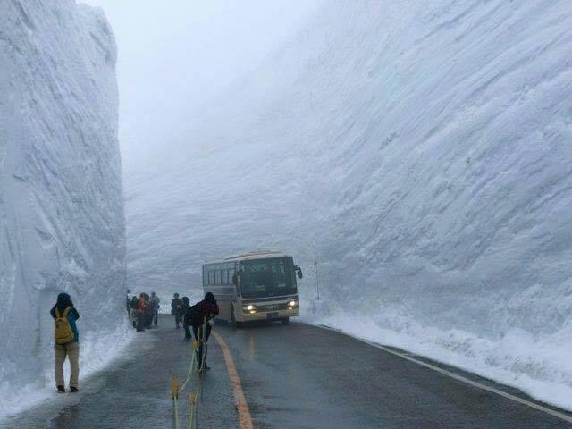 Penumpang bisa turun, dan berfoto diantar dinding salju yang tinggi.