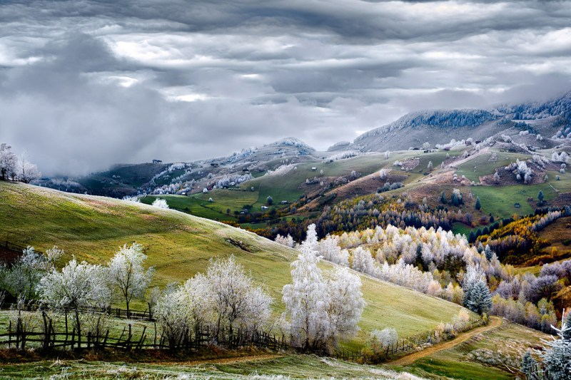 10. White frost over Pestera village in Romania.