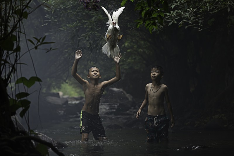 5. Two boys are trying to catch a duck near a waterfall.
