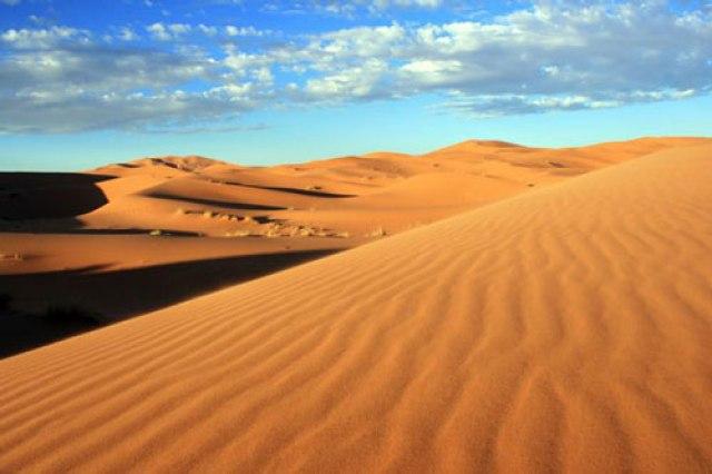 Gurun Sahara di Afrika Utara (sumber)
