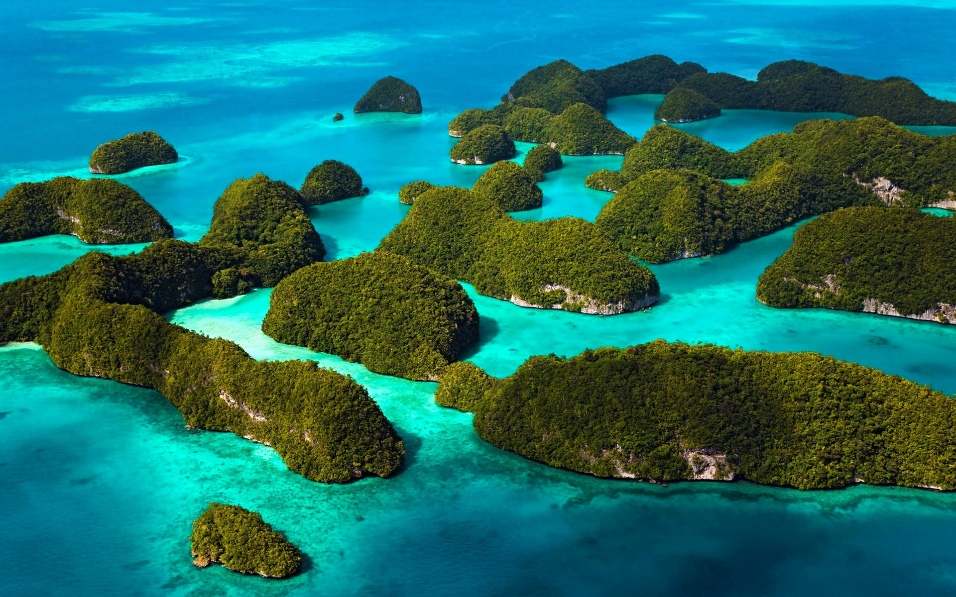 Tips Liburan Murah Ala Backpacker Ke Raja Ampat