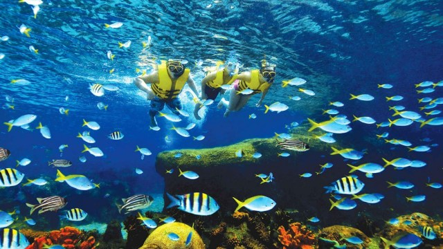 There are many activities that can be done at Sentosa Island