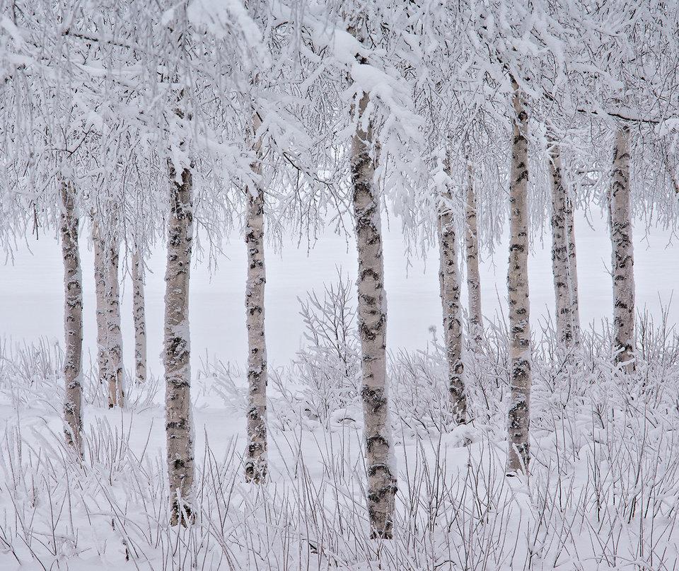 JON MARTIN-THE INTERNATIONAL LANDSCAPE PHOTOGRAPHER OF THE YEAR