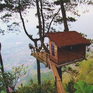 Omah kayu wisata gunung banyak