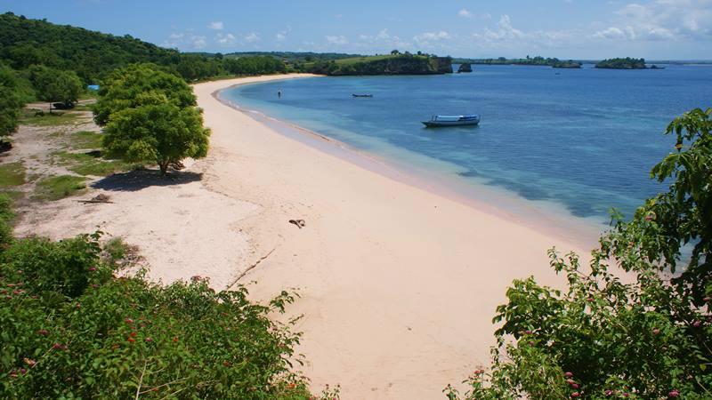 Pantai Pink atau Pantai Tangsi di Lombok