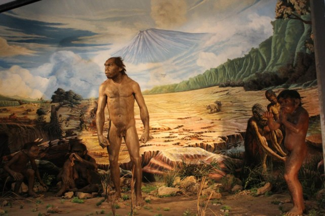 Museum ini menjadi museum terlengkap di Jawa Tengah dalam mengungkap sejarah manusia purba