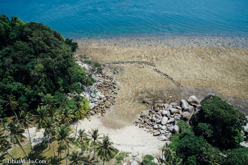 Pohon kelapa dan pulau memenuhi pulau ini