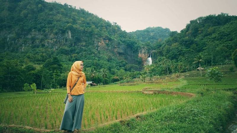 Curug is surrounded by verdant rice fields by IG @ imoccacino21
