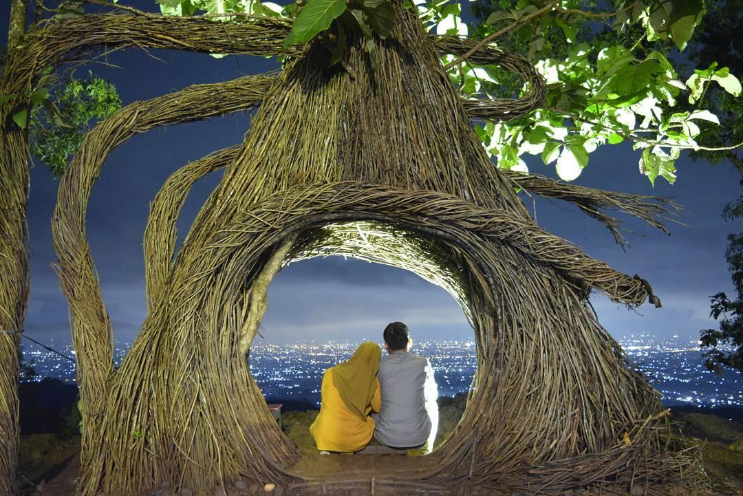 Puncak Pinus Pengger Wisata Jogja Yang Menarik Untuk Pecinta Ketinggian Dan Sebuah Tempat Wisata Romantis