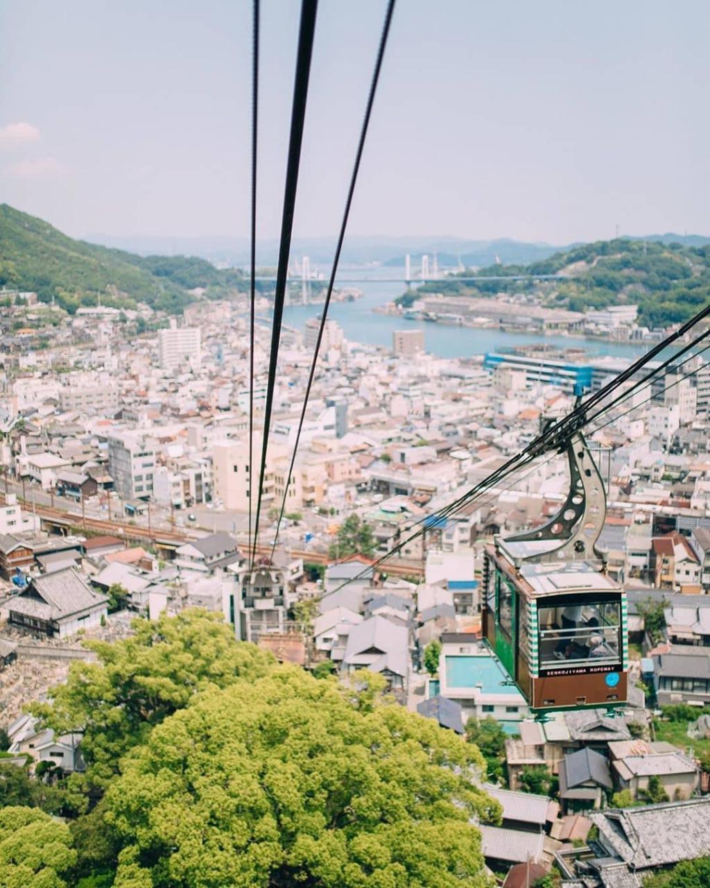 Tips Memilih Paket Sewa Wifi Jepang Buat Kamu Yang Mau Liburan Ke Jepang!