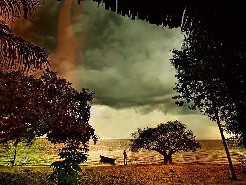 Ето тази прегръдка на зеления рай си е донесъл Филип Снимка: Румен Койнов