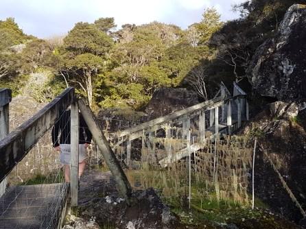 The first bridge