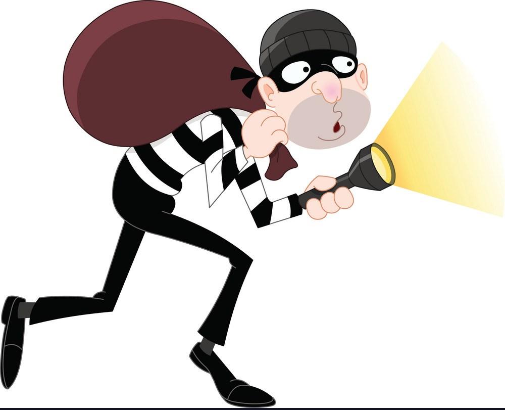 Stop Thief!!!