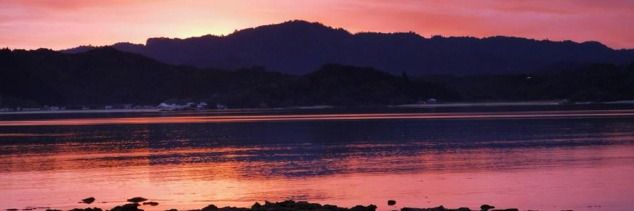 Puriri Bay 1