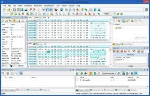 Hex Editor Neo Crack v6.54.02.6790 Free Download With Serial Key 2021