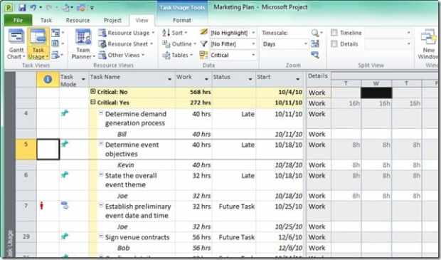 Microsoft Project Crack 2021 _ Management / Software Free