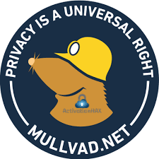 Mullvad VPN 2021.2 Crack Free Download Latest Version