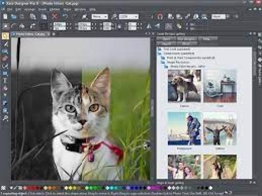 Xara Web Designer Premium 18.0.061670 Crack & Serial Key [Latest]