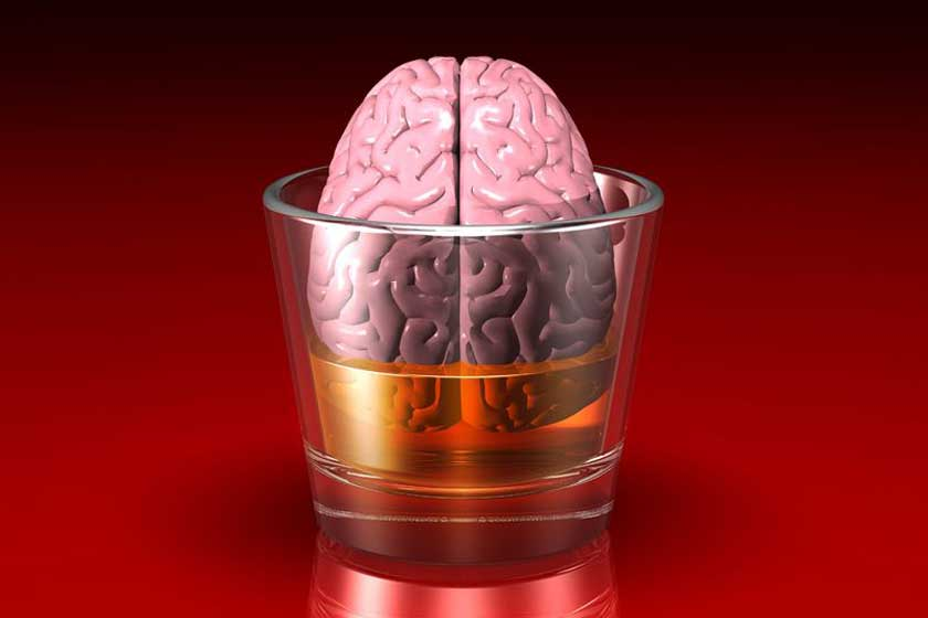Brain in a glass – 123rf.com