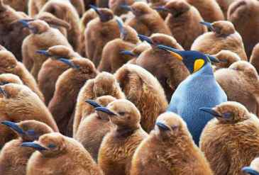 How to Stand Out From the Competitive Crowd and Get Instant Customer Recognition
