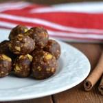 Cinnamon Crispy Date Bites (AIP/Paleo/Refined Sugar-Free)