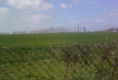 The site of aproposed housing developmentin Streethay