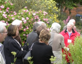 Tour guide Susan Baird leads the group through the herb garden at Erasmus Darwin House