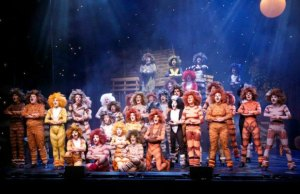 A Lichfield Garrick Youth Theatre performance of Cats
