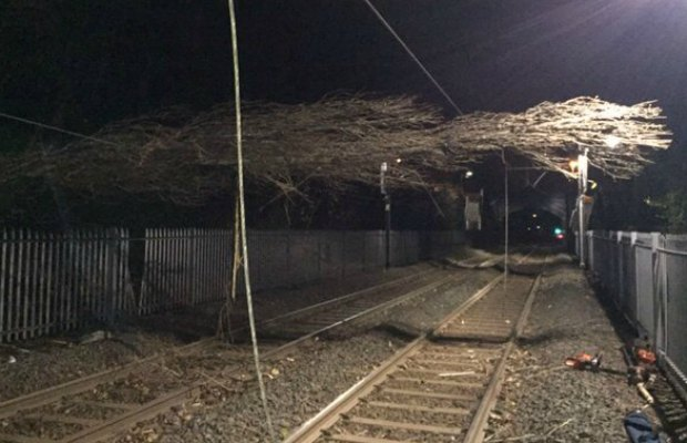 A fallen tree on the cross-city line. Pic: London Midland