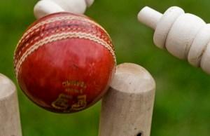 Cricket. Pic: Graham Dean