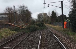 Fallen trees on the cross city line at Sutton Coldfield