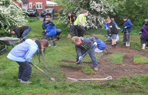 Cubs creating the bee beach in Beacon Park