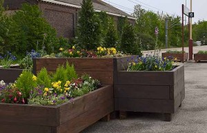 The new planters at Lichfield City station