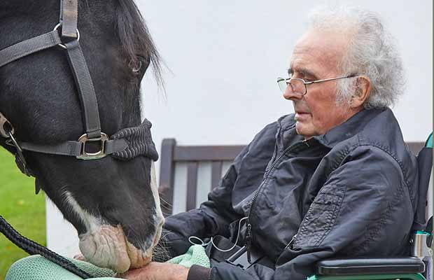 Ron Smith and his horse Jay