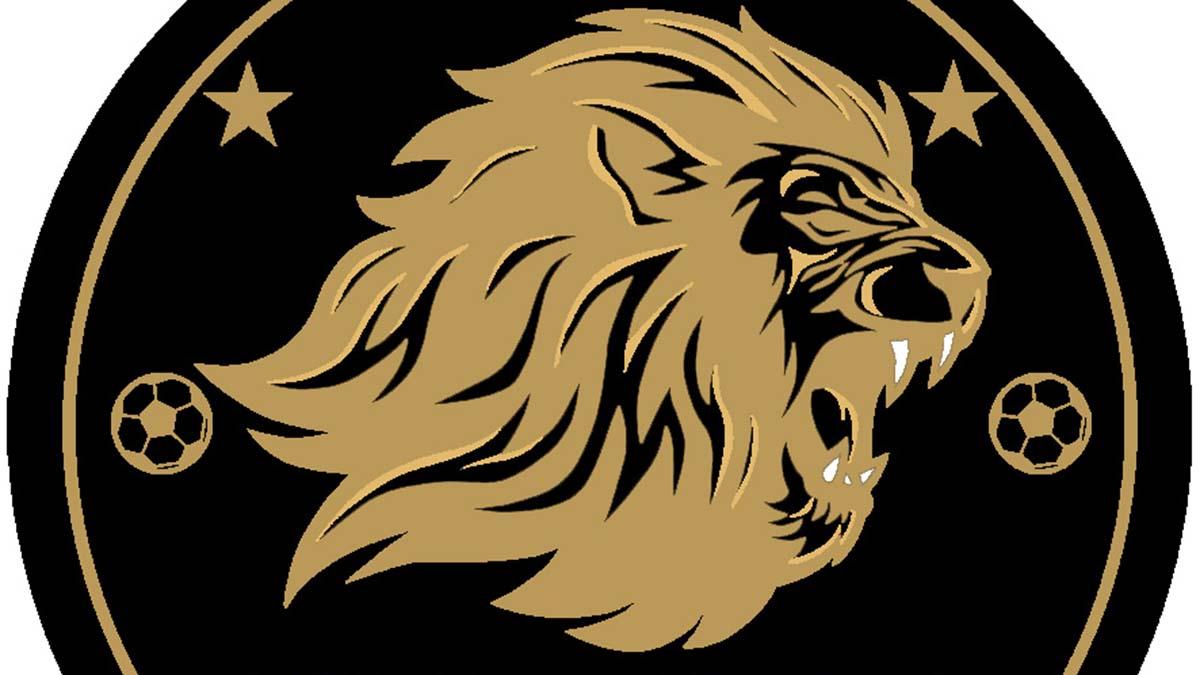 Lichfield Lions logo