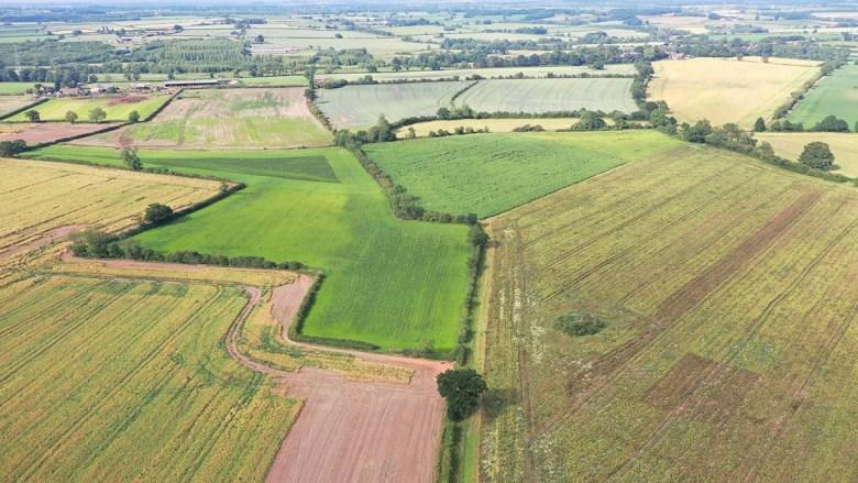 The site earmarked for a solar farm in Haunton