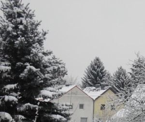 trüber Wintertag