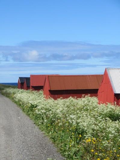 Noorwegen 634