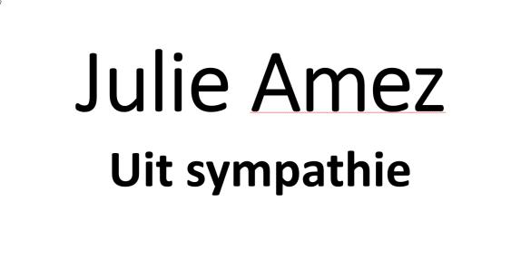 julie amez