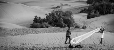 Werner Schmitz - in the dunes
