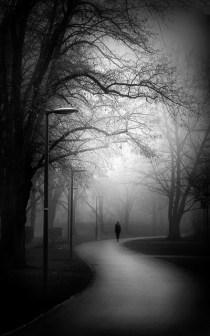 Iskender Ersoy - Nebel