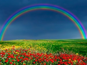 De wereld in kleuren