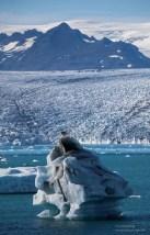 iceland2016-1289
