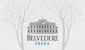 Belvedere busca el mejor Belvedere Martini